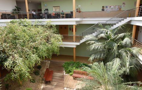 Jardim e acessos interiores ASFE Saúde